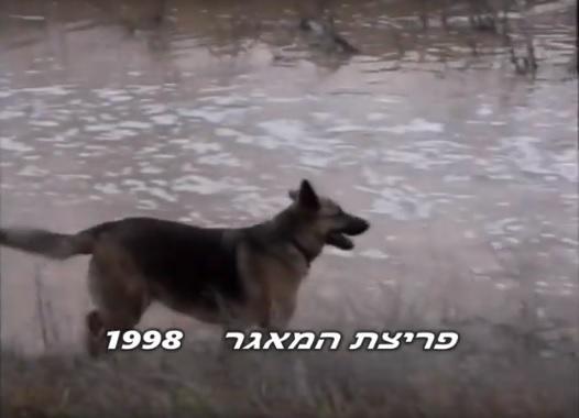 פריצת המאגר בקיבוץ רעים 1998